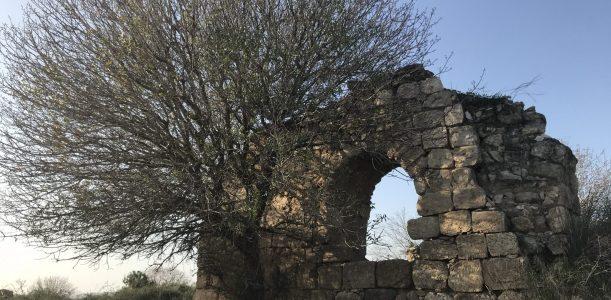 מסע בזמן – לחיפה ב1865, לירושלים של שנת 1000 ומכתב בן 2000 מרומא