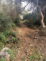 נחל עובדיה - היובל האמצעי - שביל העולה מאפיק הואדי לגבעה של רמת גולדה לאורך קו הדלק הלבן המסומן במפות טופוגרפיות