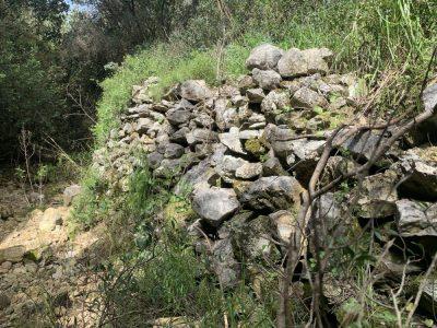נחל עובדיה (מארס 2020) העיר האבודה - לאורך היובל הדרום מזרחי - שרידי קיר תמך שמעליו עברה כנראה דרך קדומה