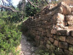 נחל שיח-חומת המנזר