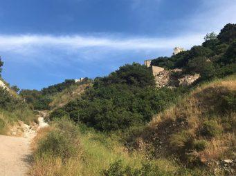 נחל שיח-חורבות המנזר