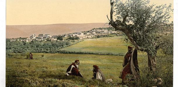 הגינה הארץ ישראלית
