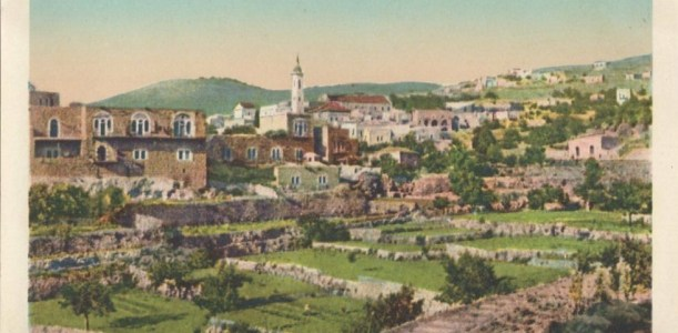 איש תחת גפנו – מסע בעקבות הגן הארץ הישראלי