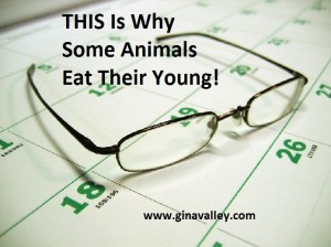 Humor Funny Humorous Family Life Love Laugh Laughter Parenting Mom Moms Dad Dads Parenting Child Kid Kids Children Son Sons Daughter Daughters Brother Brothers Sister Sisters Grandparent Grandma Grandpa Grandparents Grandfather Grandmother Parenting Gina Valley Naps Teenagers THIS Is Why Some Animals Eat Their Young!