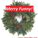 Humor Funny Humorous Family Life Love Laugh Laughter Parenting Mom Moms Dad Dads Parenting Child Kid Kids Children Son Sons Daughter Daughters Brother Brothers Sister Sisters Grandparent Grandma Grandpa Grandparents Grandfather Grandmother Parenting Gina Valley Merry Funny! Christmas Funnies