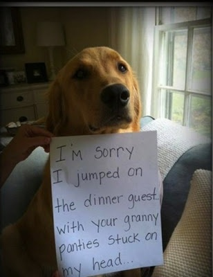 Humor Funny Humorous Family Life Love Laugh Laughter Parenting Mom Moms Dad Dads Parenting Child Kid Kids Children Son Sons Daughter Daughters Brother Brothers Sister Sisters Grandparent Grandma Grandpa Grandparents Grandfather Grandmother Parenting Gina Valley Friday Funnies – dvovc Facebook Pinterest