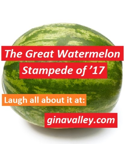 Humor Funny Humorous Family Life Love Laugh Laughter Parenting Mom Moms Dad Dads Parenting Child Kid Kids Children Son Sons Daughter Daughters Brother Brothers Sister Sisters Grandparent Grandma Grandpa Grandparents Grandfather Grandmother Parenting Gina Valley The Great Watermelon Stampede of '17 Shopping