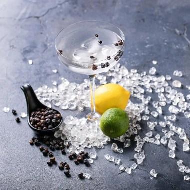 Salgsbillede Online Ginsmagning med Danske Gin.