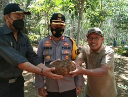 Kapolres AKBP Irwan Andy Purnamawan, SIK dan Ketua LPKNI Kab. Merangin H. Sukarlan beserta Petani Melaksanakan Panen Raya Ubi Porang di Desa Bedeng Rejo