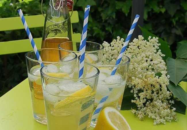 England: Elderflower Cordial