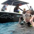 scuba diving seychelles