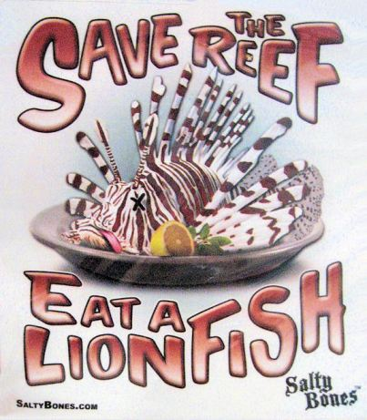 Save The Reef - Eat a Lionfish