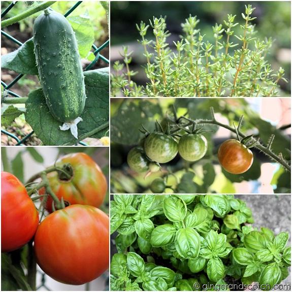 Mom's Garden 2