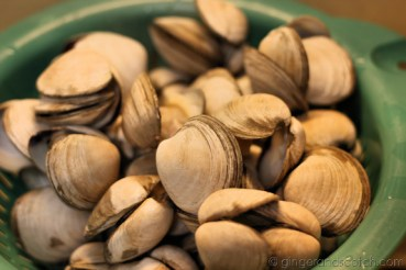 Drained clams