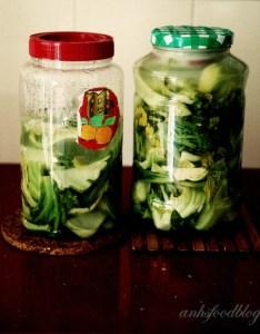 Vietnamese preserved mustard cabbage (d?a mu?i)