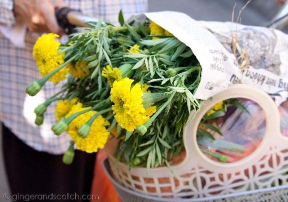 Hoi An - marigolds
