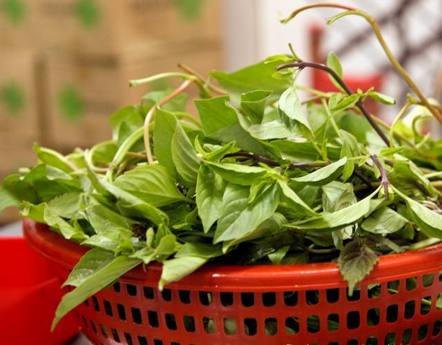 Fresh Herb Basket