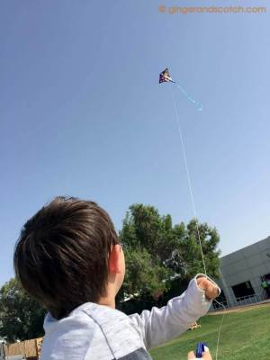 Kite Flying at Food Truck Brunch - Dubai