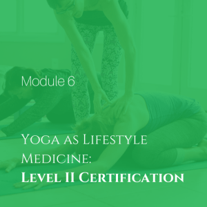 Level II Certification Yoga as Lifestyle Medicine