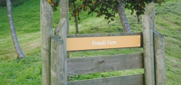Bluestone-Wales-Preseli-View