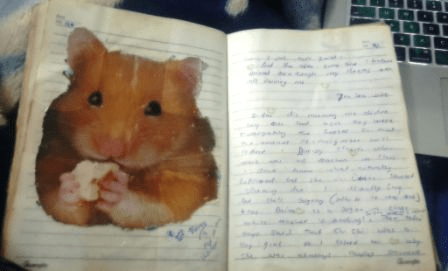 Why do I have a Rat in my Journal?