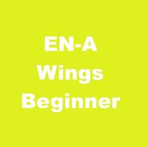 EN-A Beginner Wings