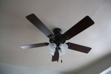 New fan, better, better