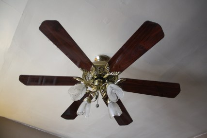 Old fan, brassy brassy