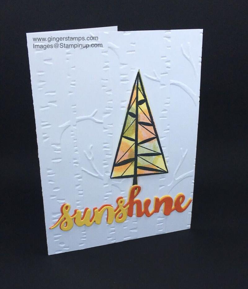 Sunshine rt