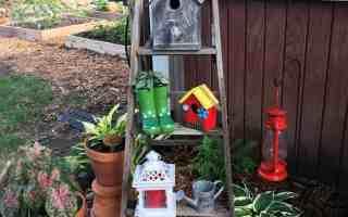 Gardening Recap – Summer 2017 Favorites