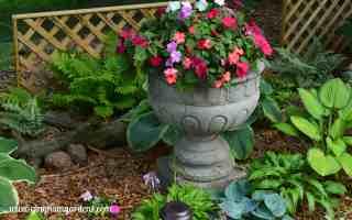 Creative Flower Container Gardening