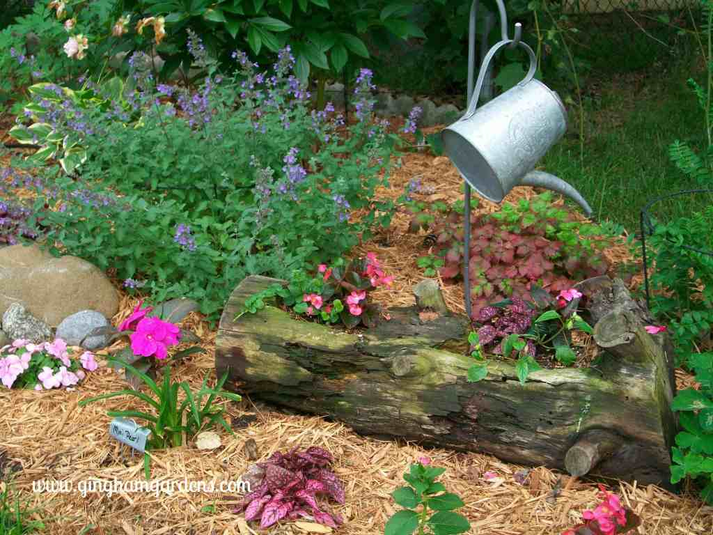Creative Flower Container Gardening - Old log made into a flower planter.