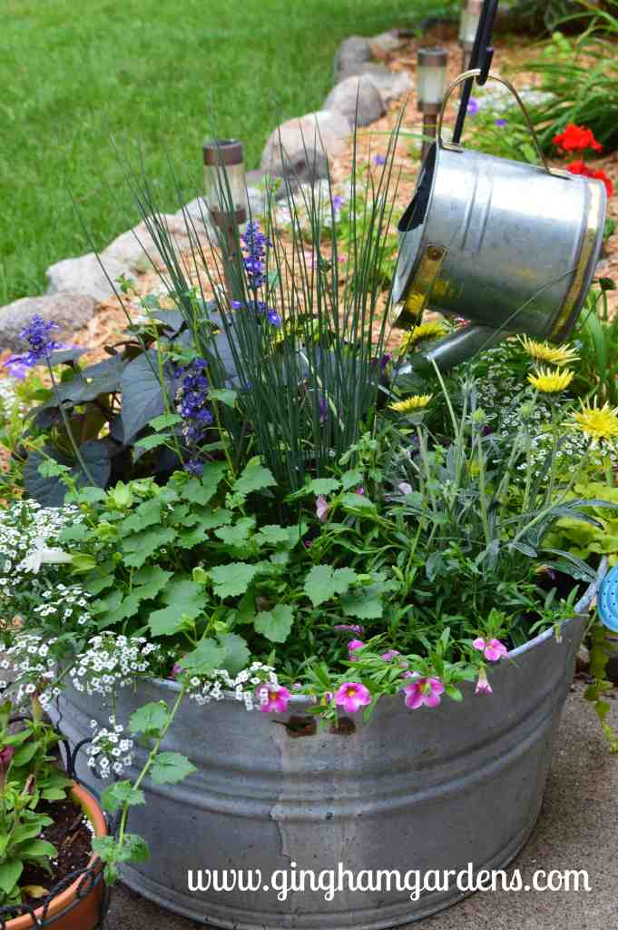 Creative Flower Container Gardening - Old aluminum wash tub filled with annuals.