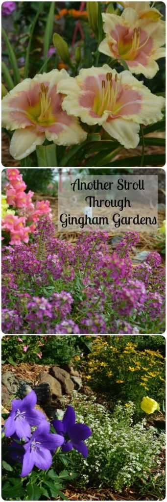 Another Stroll Through Gingham Gardens