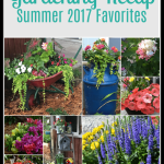 Gardening Recap – Summer 2017 Favorites
