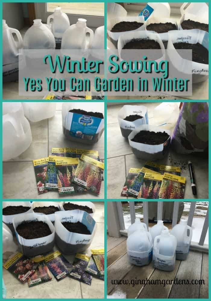 Winter Sowing - Yes You Can Garden in Winter