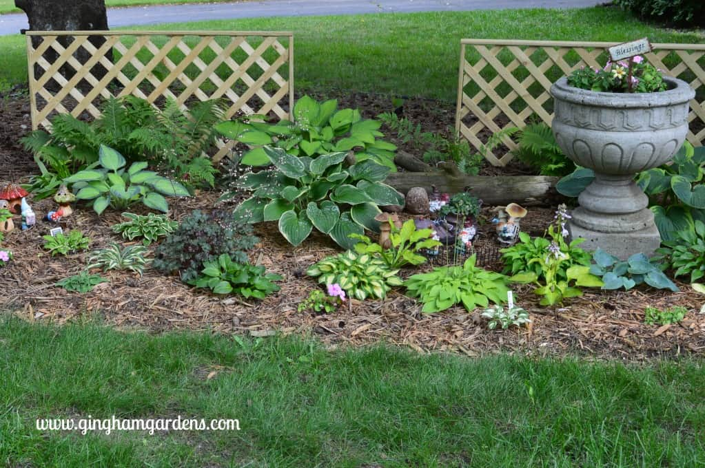 Minnesota Shade Garden | Miniature Hosta | Perennial Flower Garden Ideas