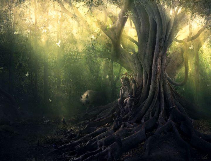 laime, koks, vilks