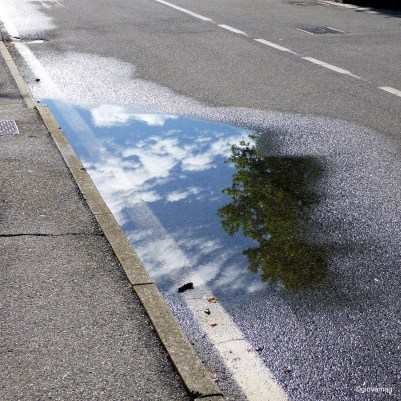 After the storm in a puddle