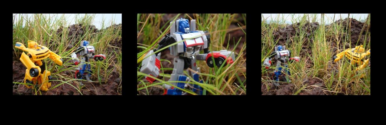 Bumblebee & Optimus Prime