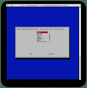 Pi-hole: installazione e prima configurazione (Aggiornato) 3