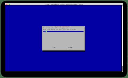 Raspberry: installare e configurare WireGuard con PiVPN 11