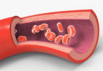 Alacsony pulzusszám magas vérnyomás mellett: tünetek és kezelés