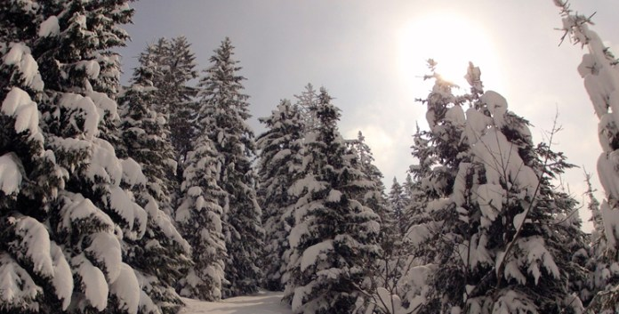 Skitour auf Mühlhörndel und/oder Mühlhornwand © Gipfelfieber.com