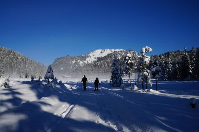 Die Röthelmoosalm mit Gründberg und Lochköpfel im Hintergrund © Gipfelfieber.com