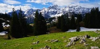 Durch den Matsch auf den Vorderskopf - Bergtour