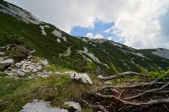 Aufstieg durch Latschenfelder © Gipfelfieber.com