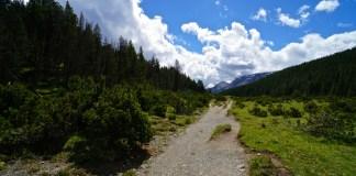 Auf den Spuren von Bär und Steinbock