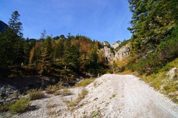 Breite Forstwege bis zum Plumssattel © Gipfelfieber.com