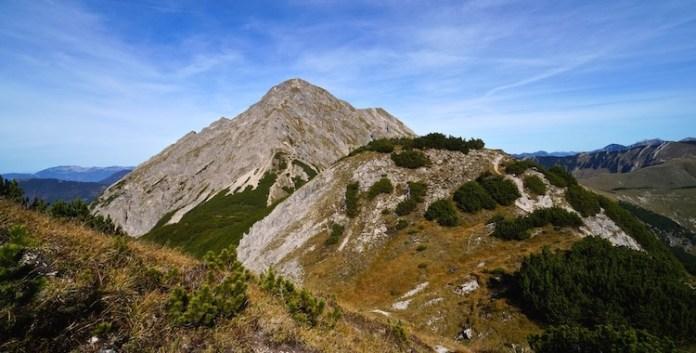 Die Mondscheinspitze im Karwendel: Im Reich der Steinböcke